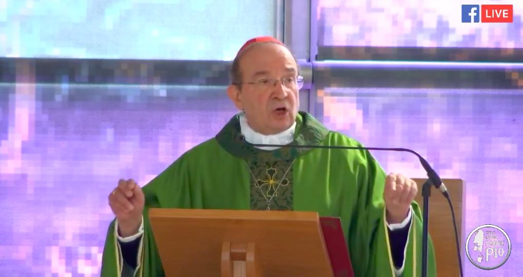 cardinale Giuseppe Petrocchi
